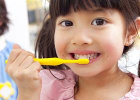 予防の基本は歯磨き
